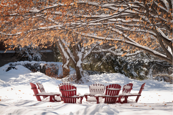 winter campus chairs