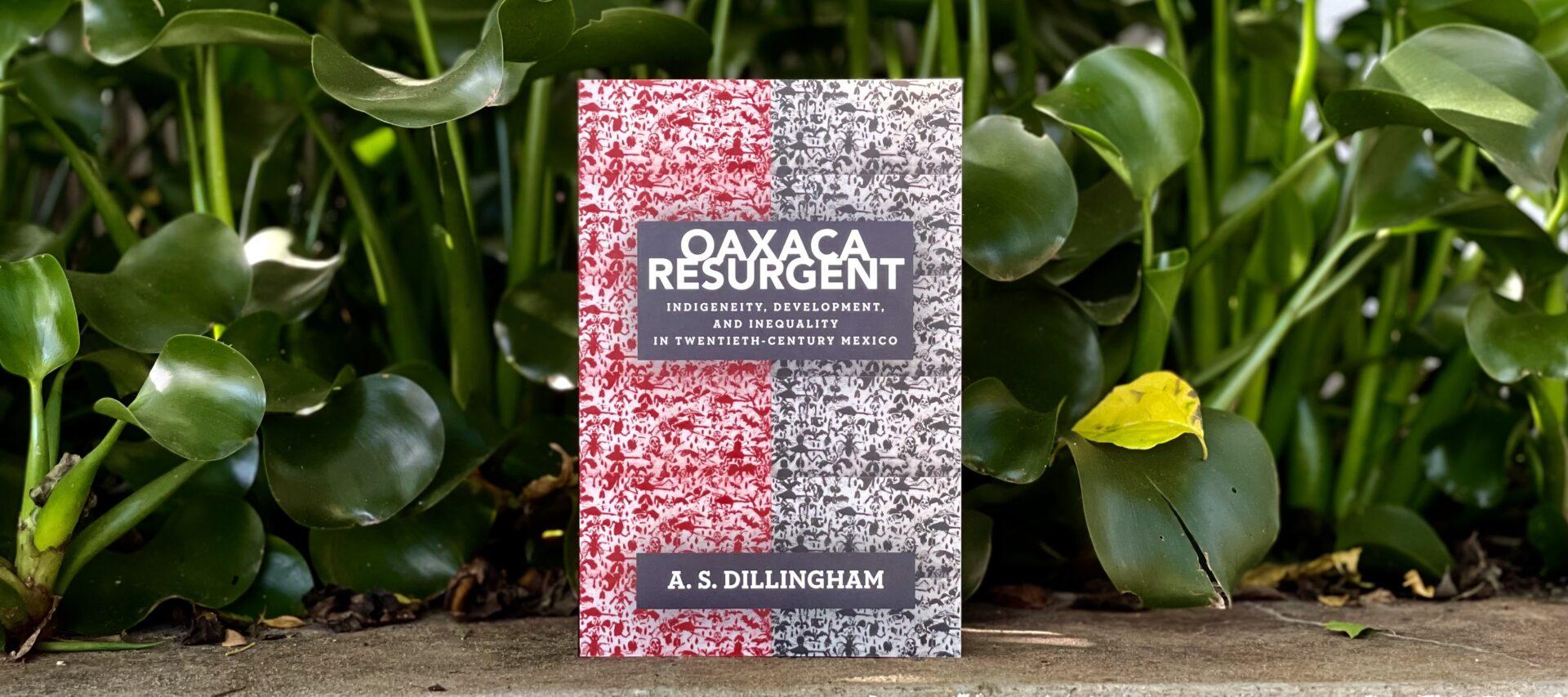 Dillingham bookcover