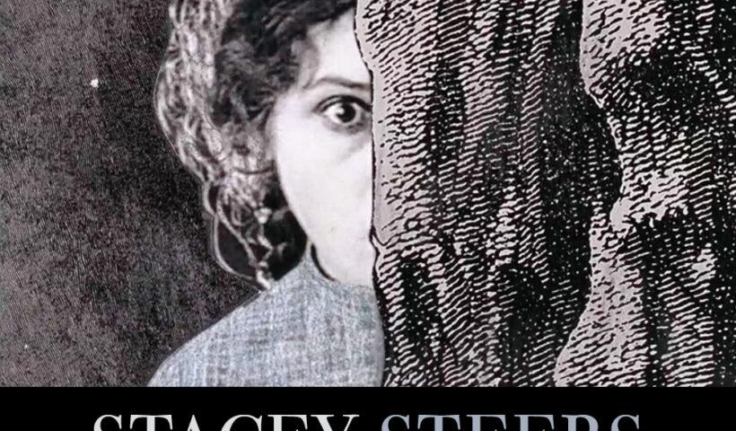 Stacey Steers art